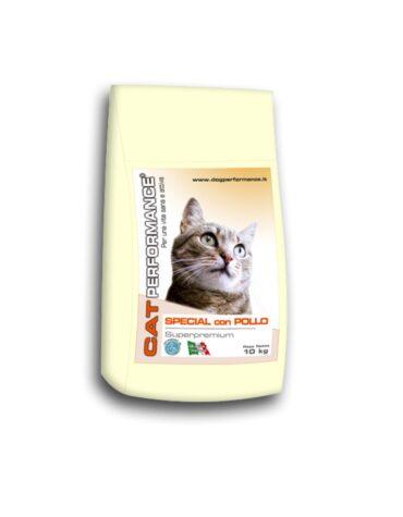 croccantini per gatto ingrosso