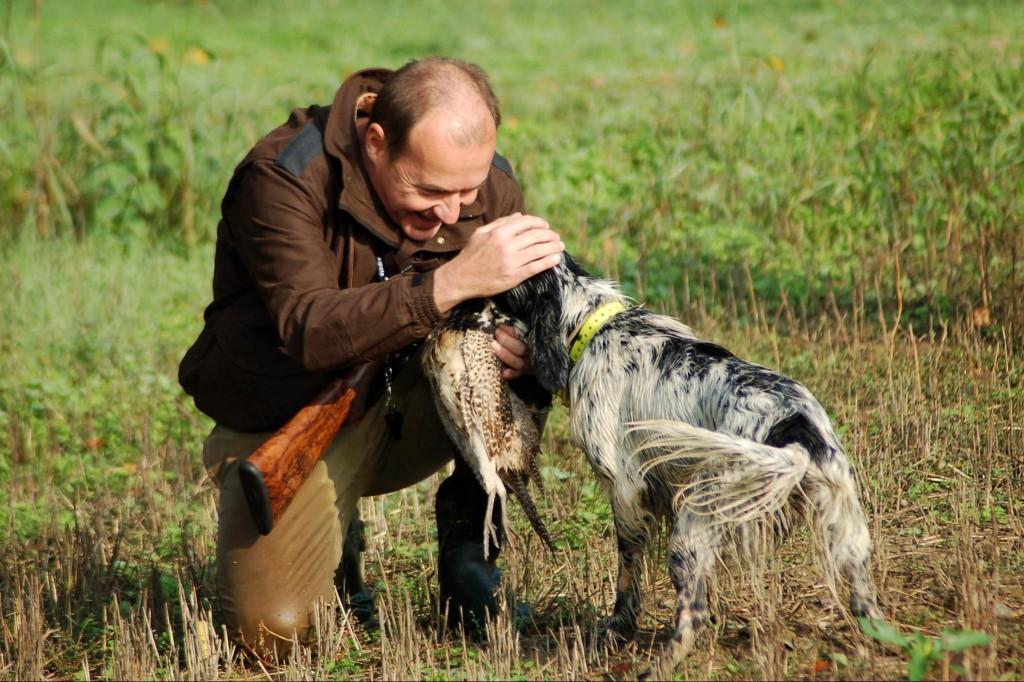 crocchette per cani da caccia